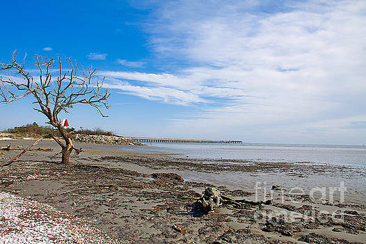 Lonely Beach At Christmas by Sandy Adams