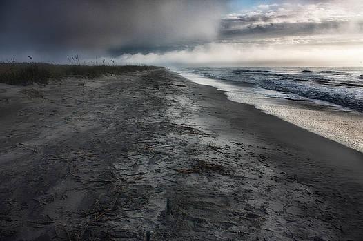 Lonely Beach by Matt  Trimble