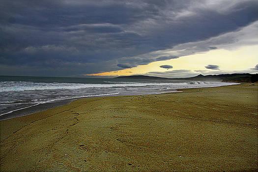 Lonely Beach by Nareeta Martin