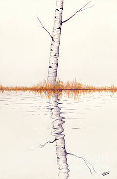 Christopher Shellhammer - Lonely Birch Tree