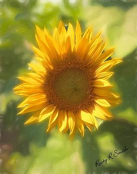 Lonely but lovely Sunflower by Rusty R Smith