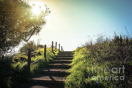 Lonely footpath leading up the stairs in the sunset by Amanda Mohler