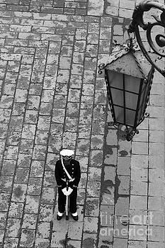 James Brunker - Lonely Guard 2