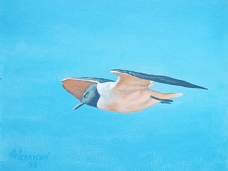 Lonely Gull by Gilbert Pennison