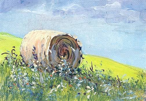 Lonely Hay Bale by Peggy Conyers