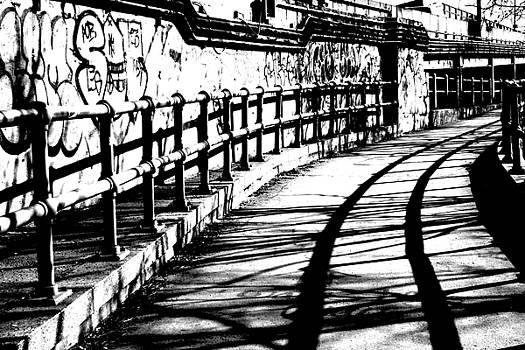Lonely Long Shadow by Steven Macanka