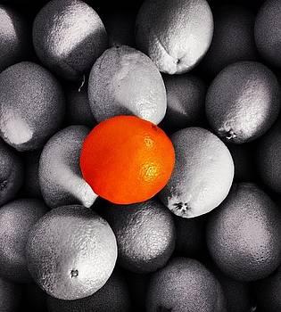 Lonely Orange by Tommy Tran