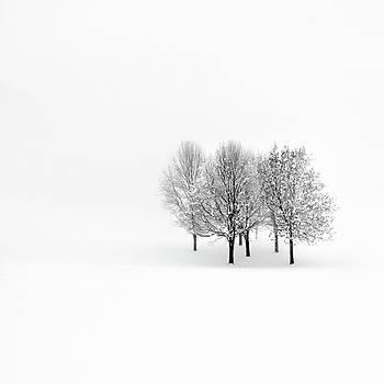 Lonely by Pawel Klarecki