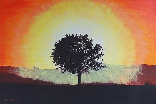 Lonely Tree in Turkey by Glenn Harden