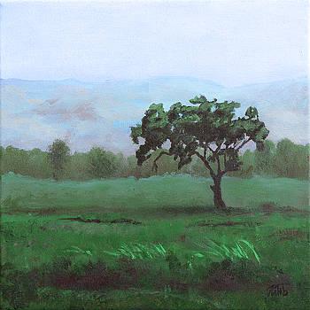 Lonely Tree by Masha Batkova