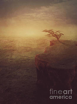Lonely tree by Mythja Photography