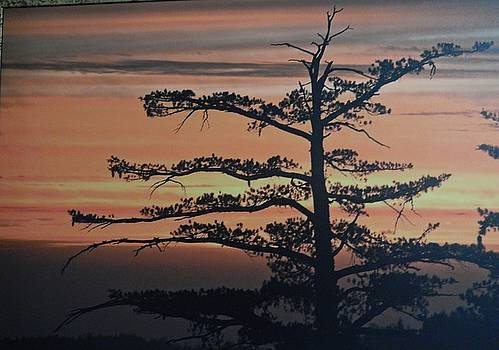 Lonesome Sunset  by Susan Ince