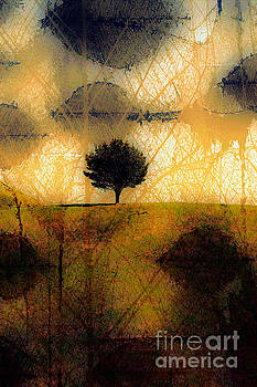 Lone Tree on a Hill Abstract in Autumn by Linda Matlow