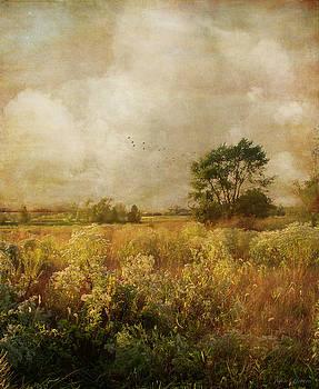 Long ago and far away by John Rivera