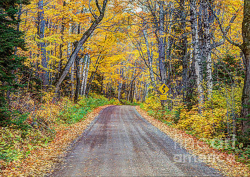Wayne Moran - Long and Winding Autumn Roads North Shore Minnesota