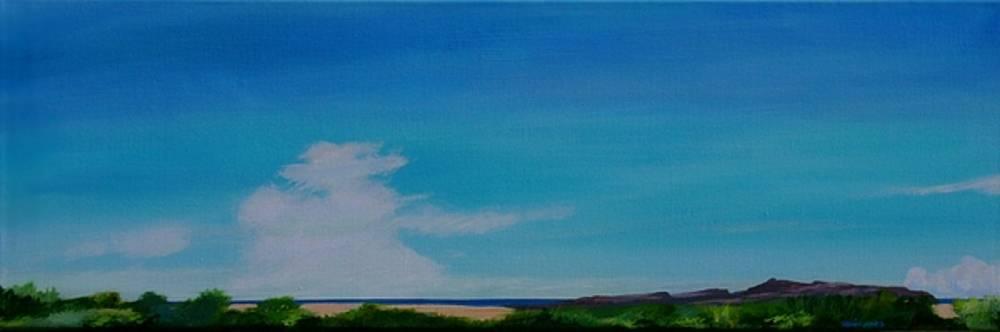 Long Away by Dave Jones