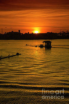 Long Beach Sunset by Mariola Bitner