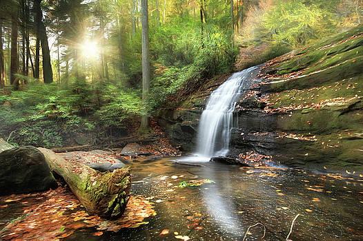 Lori Deiter - Long Creek Falls