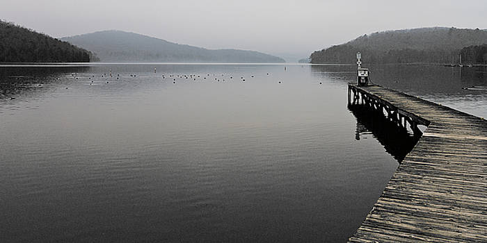 Long Dock Into The Fog by Ron Dubin