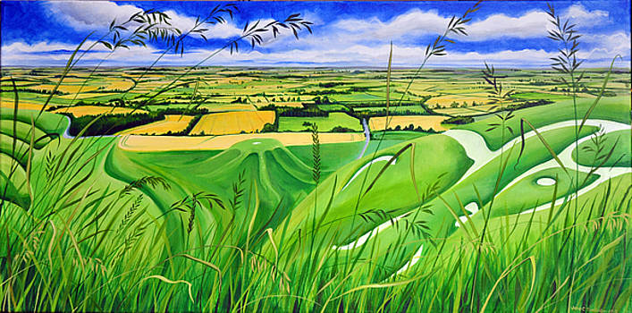 Long Grass At White Horse Hill by Jane Tomlinson