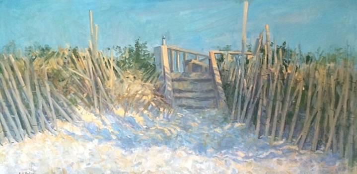 Long Island dune steps by Bart DeCeglie
