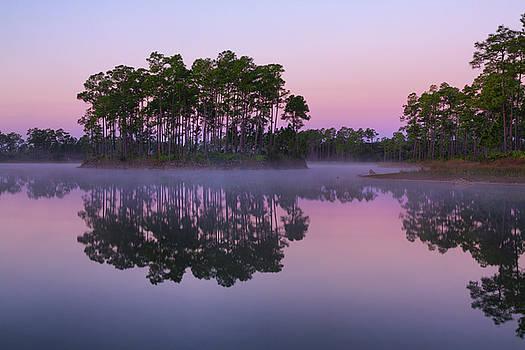 Long Pine Key Dawn II by Claudia Domenig