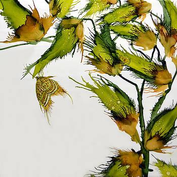 Long Pods and Butterfly by Jennifer  Creech