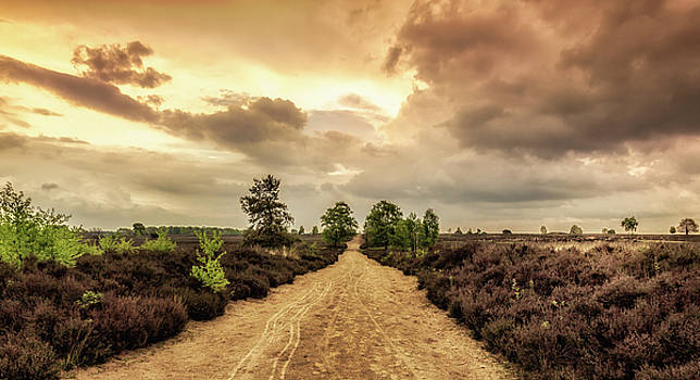 Long road ahead by Tim Abeln
