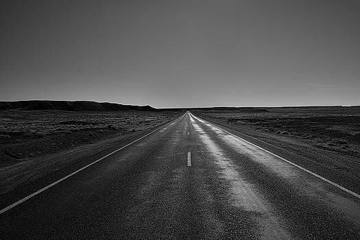 Long Road at Dusk - Petrified Forest by Gej Jones