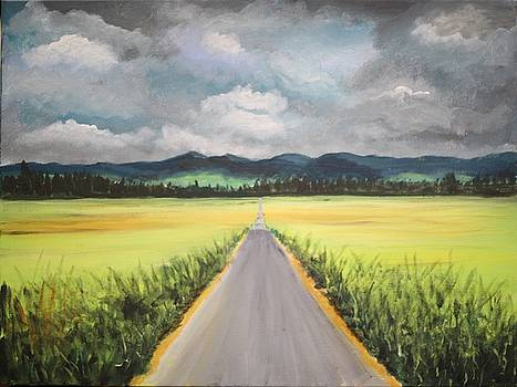 Long Road by Bob Hasbrook
