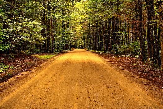 Long Way Home - Bog Road by Naturally NH