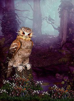 John Junek - Long Whisker Owl