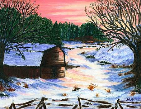 Long Winter by Colleen Ward