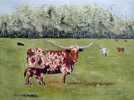 Longhorn Beauty Queen by Jean Blackmer