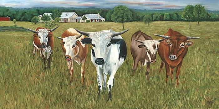 Longhorns by Helen Eaton