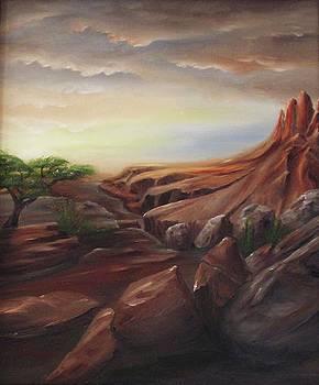 Lonley Canyon by John Johnson