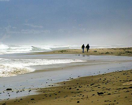 Marty Koch - Lonly Beach