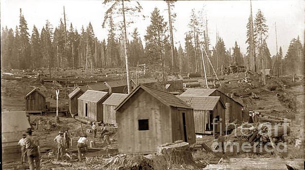 California Views Mr Pat Hathaway Archives - Logging camp cabins on a train circa 1900