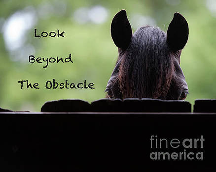 Look Beyond The Obstacle by Shawn Hamilton