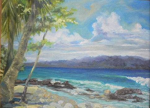 Looking at Panama by Kathryn Colvig