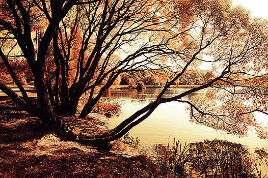 Jenny Rainbow - Looking at the Mirror. Airy Lace of Autumn