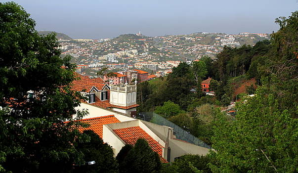 Looking Down on Funchal by Laurel Talabere
