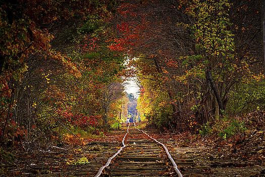 Looking down the tracks by Darryl Hendricks