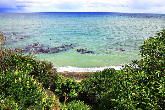 Looking down to the Beach by Nareeta Martin