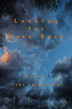 Don Mitchell - Looking for Bora Bora book cover