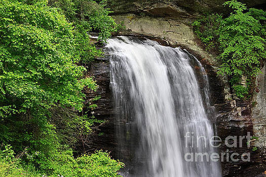 Looking Glass Falls in the Summer with Green Leaves by Jill Lang