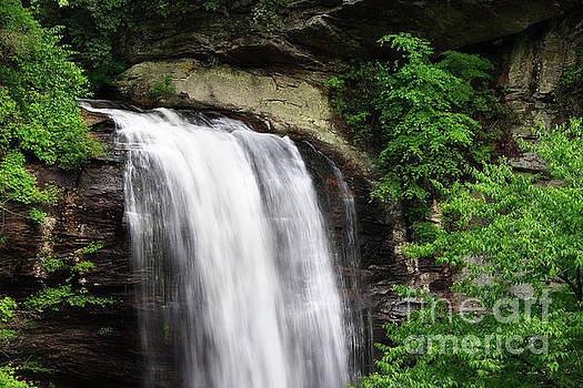 Looking Glass Falls in the Summertime by Jill Lang