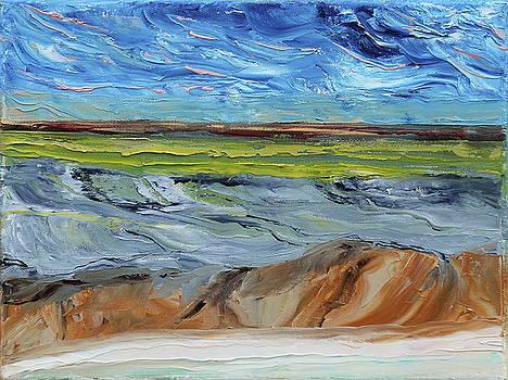 Looking Inland by David King Johnson