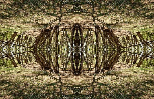 James Steele - Looking Inside Jims Mind