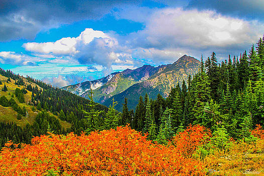 Looking North by Burland McCormick